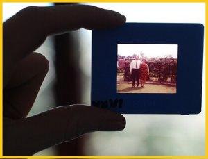 Inscannen van Foto's en Dia's, digitaliseren dia's