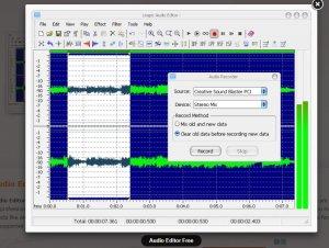 Leapic audio editor ruis verwijderaar